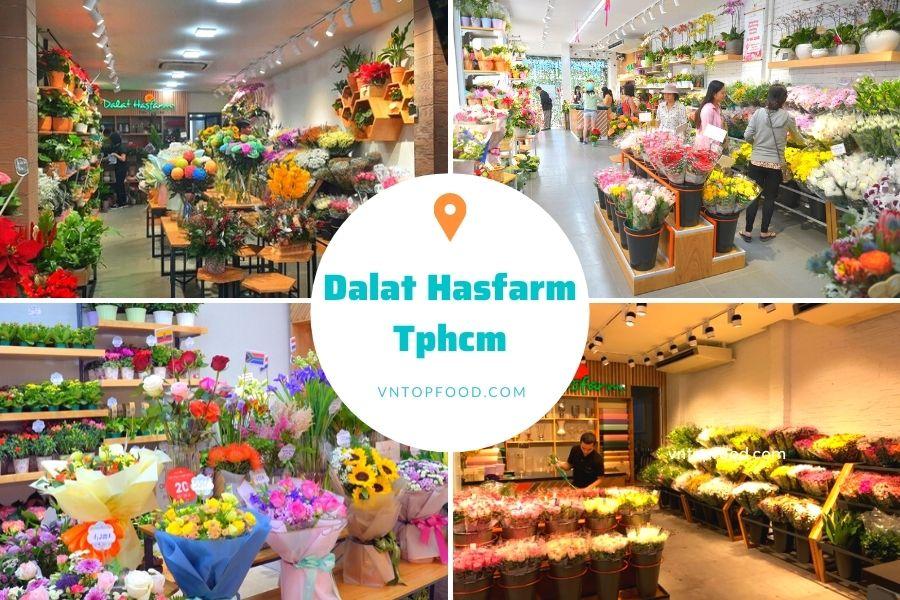 Hệ thống cửa hàng hoa tươi Dalat Hasfarm Tphcm