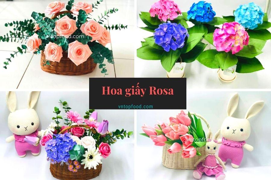 Hoa giấy Rosa