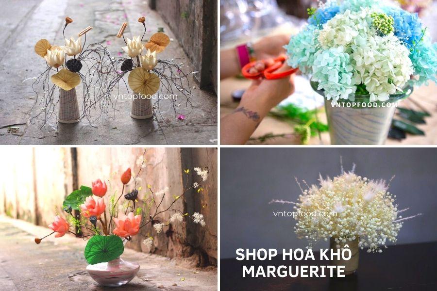 Shop Hoa Khô Marguerite